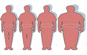 Sobrepeso y obesidad - Hígado graso